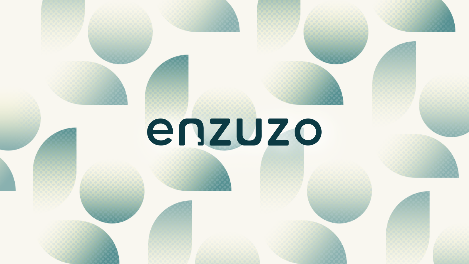 Enzuzo Data Privacy